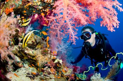 Google pruebas submarinas